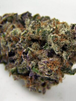 buy blackberry haze online