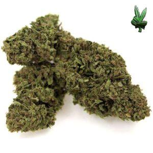buy cheese marijuana online