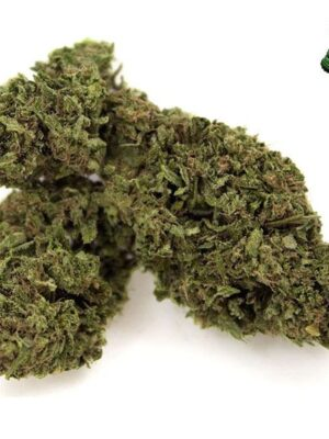 buy cheese marijuana online