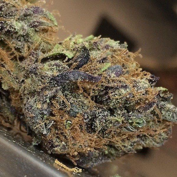 buy black water marijuana online
