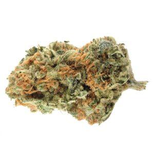 buy northern light marijuana online