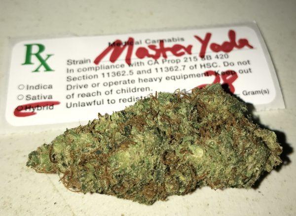 master yoda strain